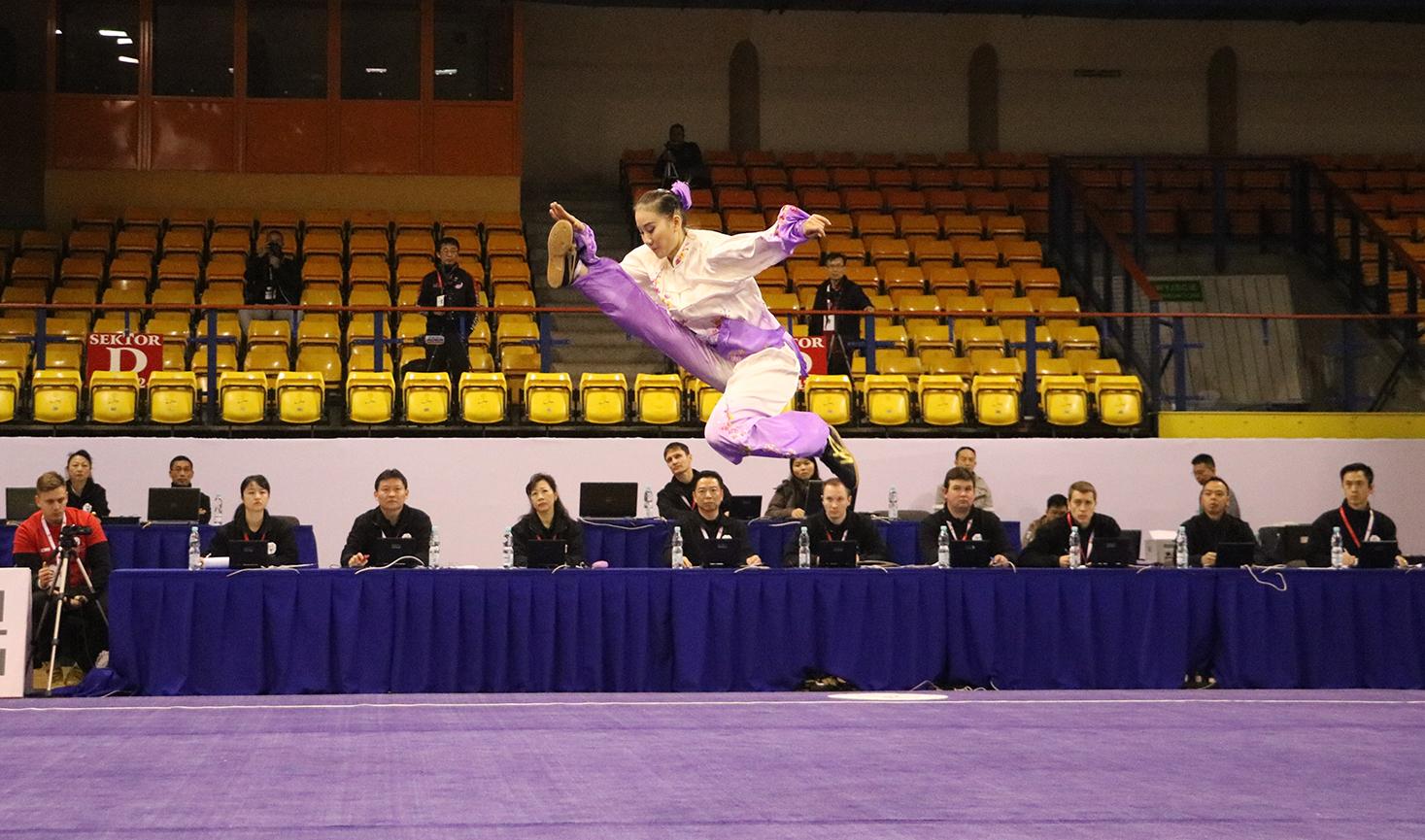 2016 2nd World Taijiquan Championship